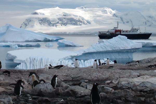 Antarctica Express Cruise Image