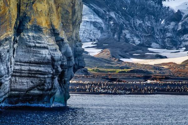 Antarctica Circle via Falklands and South Georgia Cruise Image